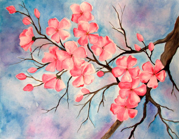 591x460 Cherry Blossom Watercolor Painting