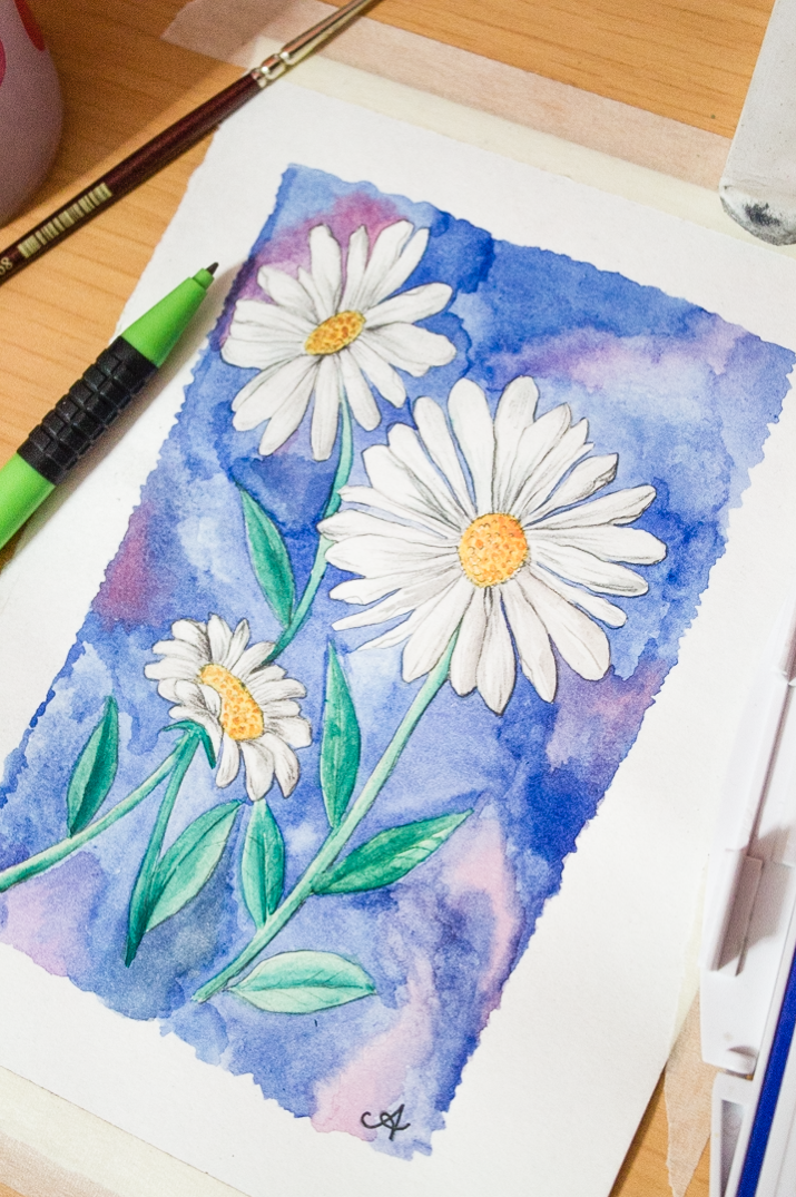 715x1075 Draw + Paint A Daisy In Watercolour Surely Simple