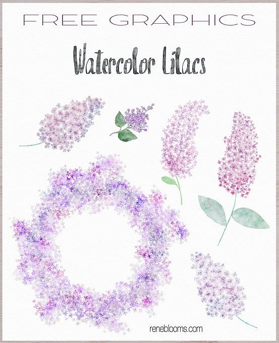 Free Watercolor Clipart
