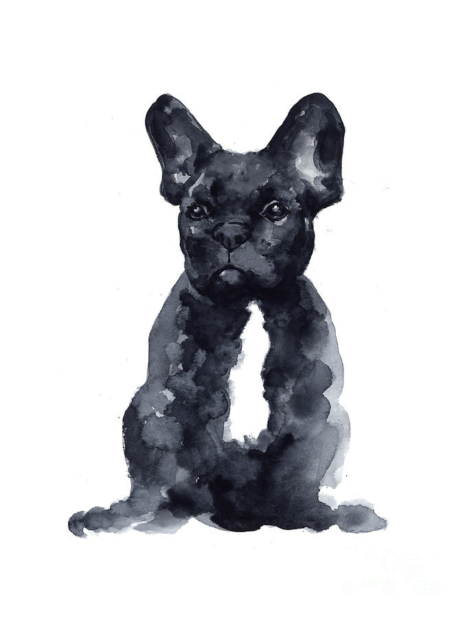 683x900 Black French Bulldog Watercolor Poster Painting By Joanna Szmerdt