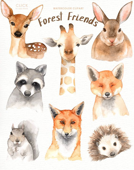 570x723 Forest Friends Watercolor Clip Art,woodland Animals, Kids Clipart