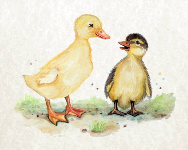 650x520 Stunning Duckling Watercolor Painting Reproductions For Sale On