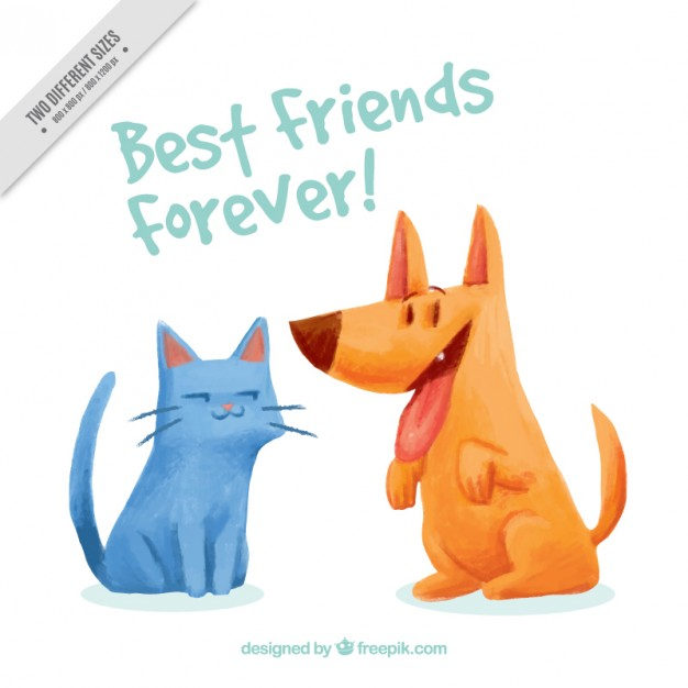 626x626 Watercolor Pets Friendship Background Vector Free Download