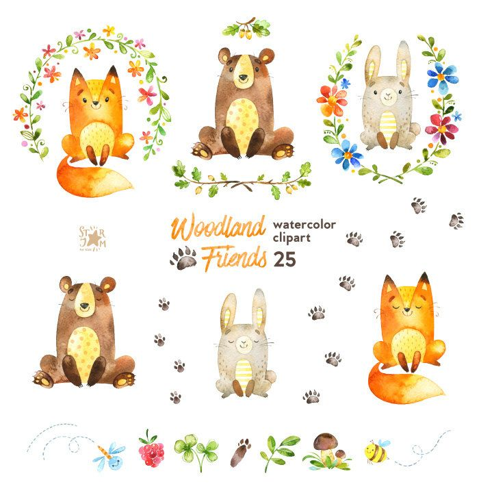 700x717 Woodland Friends. Watercolor Animals Clipart, Forest, Bear, Fox