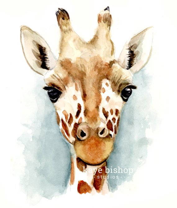 570x669 Giraffe Watercolor Painting Jungle Animal Art Animal Wall Etsy