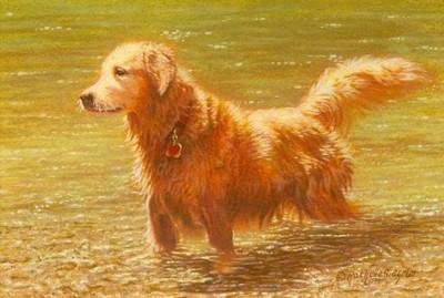 400x269 Golden Retriever Miniature Watercolor Painting