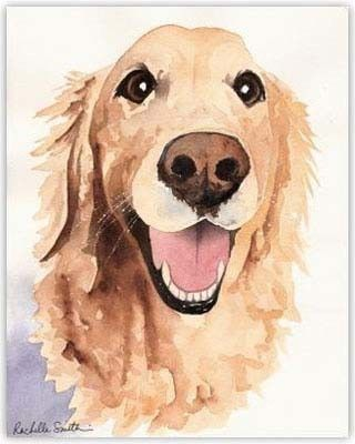 320x400 Golden Retriever Water Color Paintings