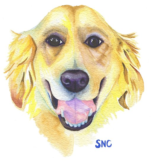 510x550 Happy Golden Retriever Watercolor Painting