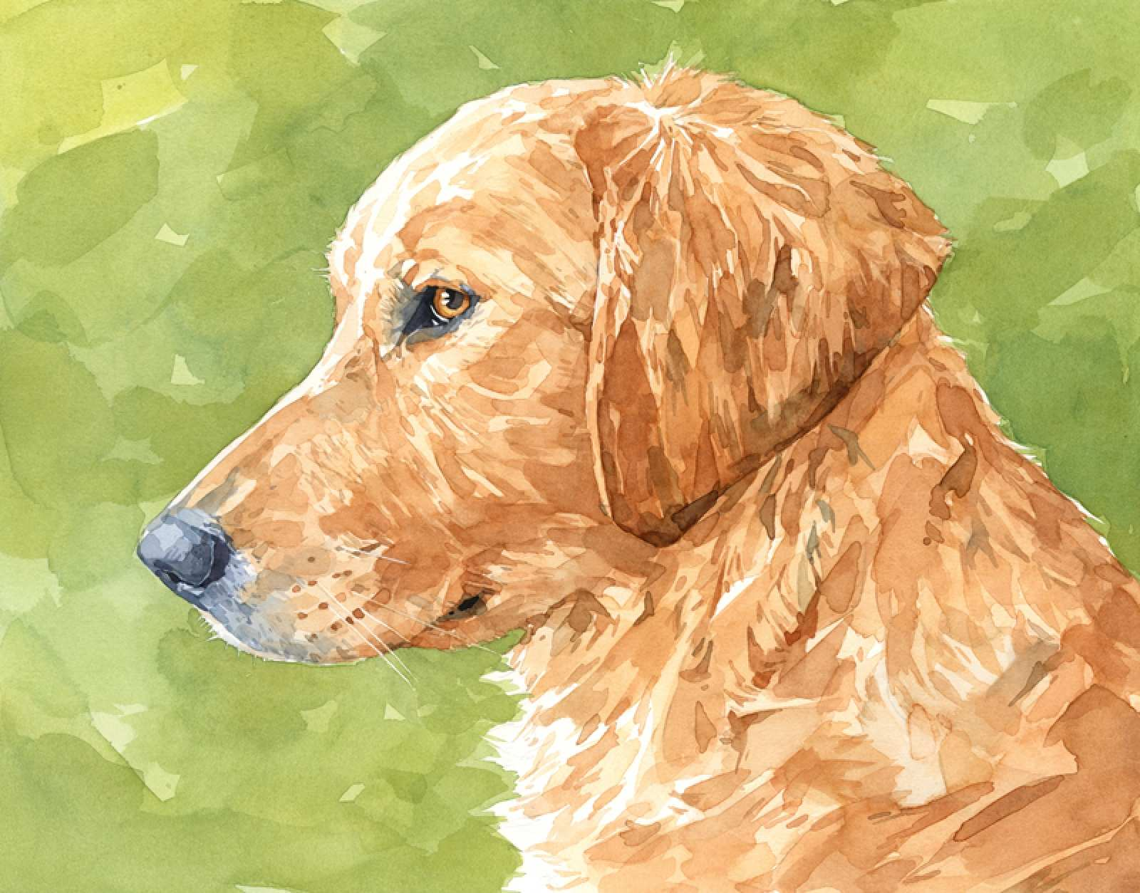 1600x1254 Puppy Painting New Golden Retriever Art Print Watercolor Limited
