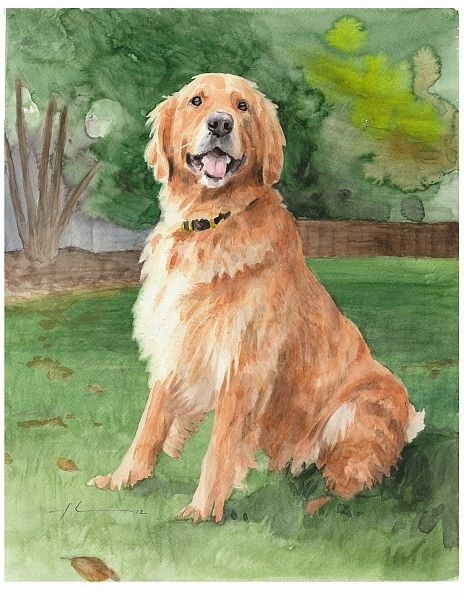 464x600 How To Paint A Golden Retriever Golden Retriever Watercolor By