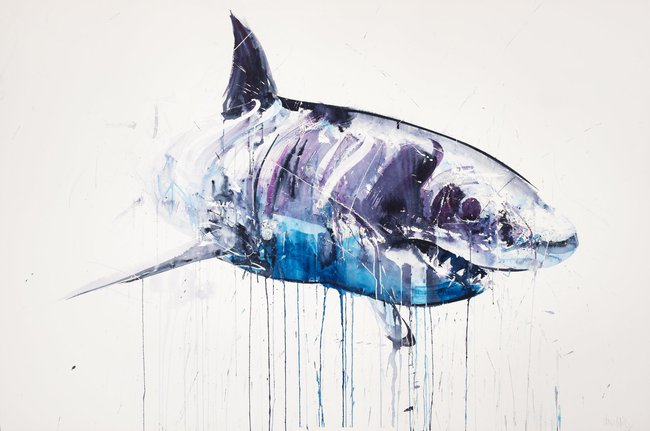 650x431 Great White Shark Ii By Dave White Limited Edition Prints Hang