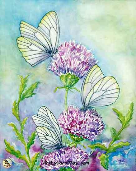 437x550 Painting Butterflies In Watercolor