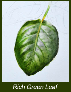 247x320 Painting Realistic Leaves And Mixing Greens