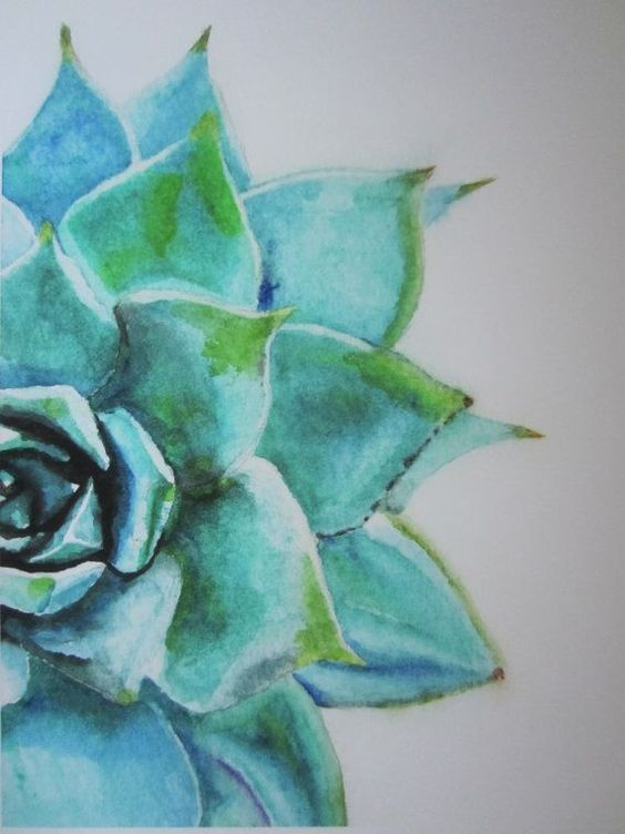 564x752 Blue Green Succulent Watercolor Print In 2018 Patterns