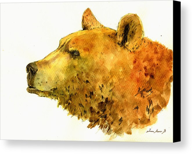 661x531 Grizzly Bear Watercolor Painting Canvas Print Canvas Art By Juan