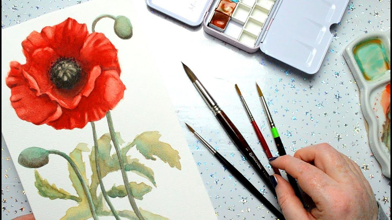 1280x720 Painting A Watercolor Poppy With Handmade Watercolors