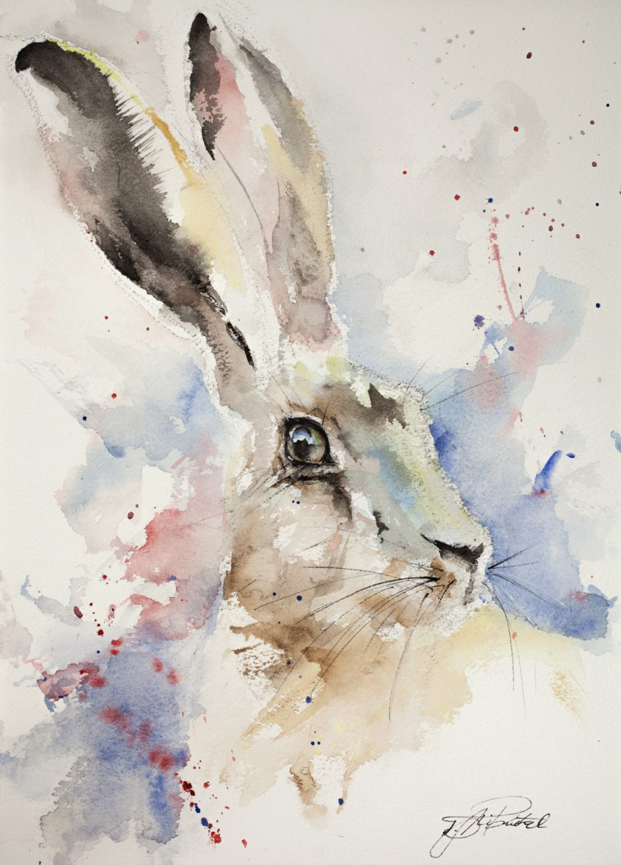 JEN BUCKLEY signed LIMITED EDITON art PRINT of original HARE chewing watercolour
