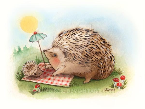 600x450 Hedgehog Watercolor 1 By Bluebirdie