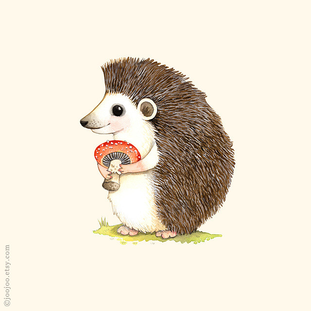 640x640 Hedgehog Watercolor Painting Watercolor And Acrylic Ink