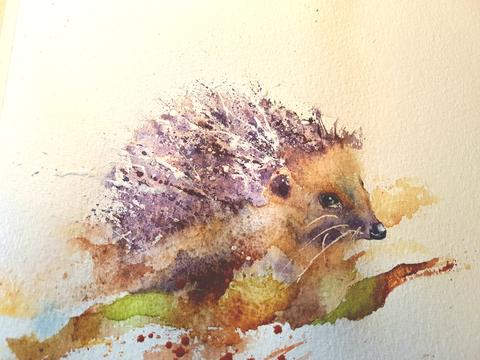 480x360 Seven Steps To Painting A Hedgehog Watercolours By Rachel