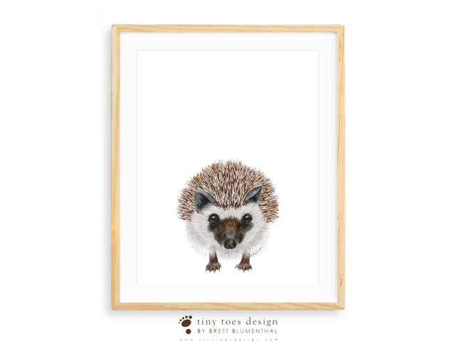 642x493 Woodland Animal Art Hedgehog Watercolor Large Print Animal Etsy