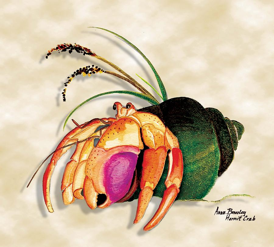900x811 Hermit Crab In Green Shell Painting By Anne Beverley Stamps