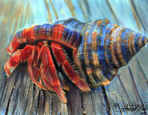 300x234 Hermit Crab Carrying His Shell House, Watercolors Ebay