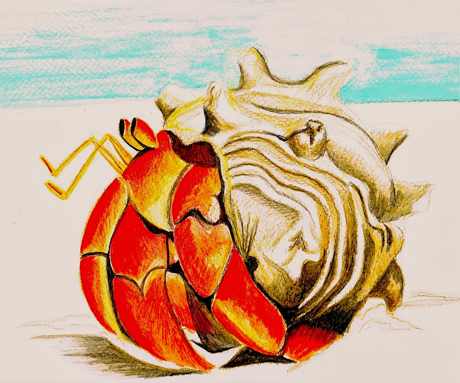 1479x1234 Louann Mattes Brown H Is For Hermit Crab