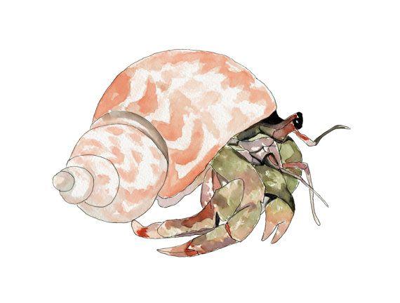 570x432 Buy 2 Get 1 Free, Hermit Crab, Crab Watercolor Crab Art Beach
