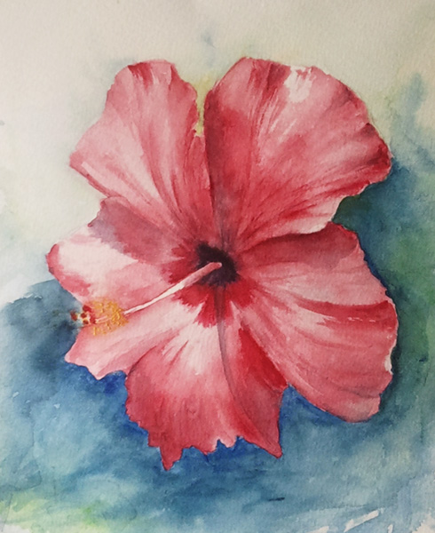 490x600 Hibiscus Flower Watercolor Painting