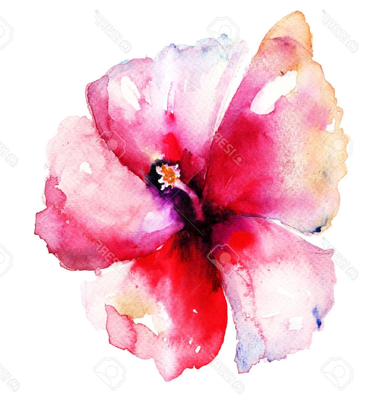 1198x1300 Hibiscus Watercolor Paintings Red Hibiscus Flower,watercolor