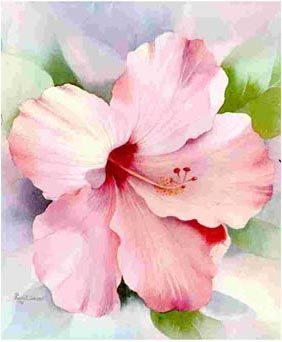282x342 Betty Denton Watercolor Artists And Paintings