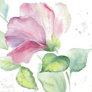 299x300 Hibiscus Watercolor Paintings Fine Art America
