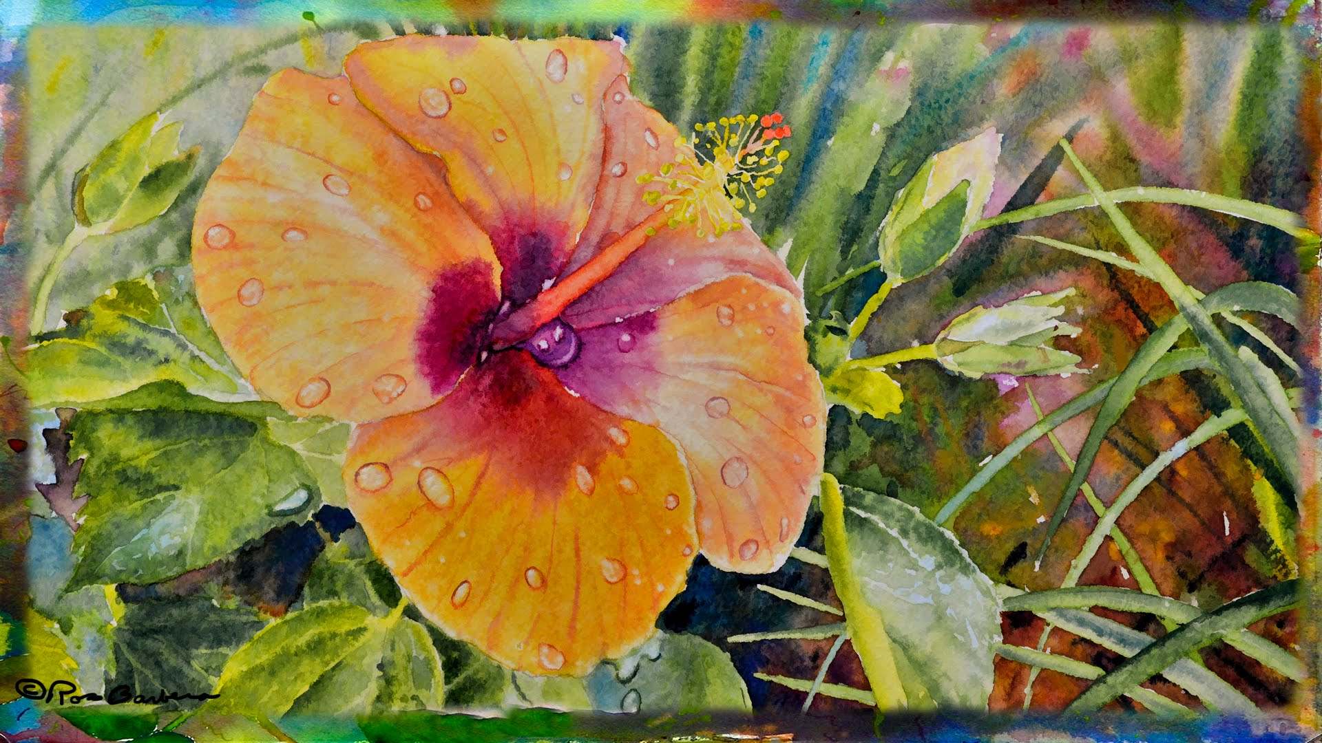 1920x1080 How To Paint The Orange Hibiscus Flower In Watercolor, Part 1