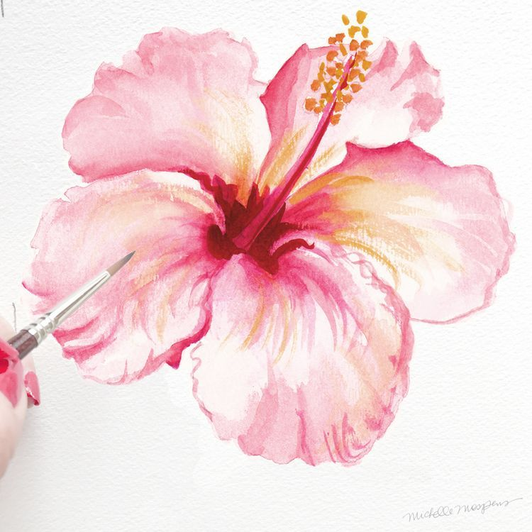 750x750 In Bloom Tropical Hibiscus (A Watercolor Paintings