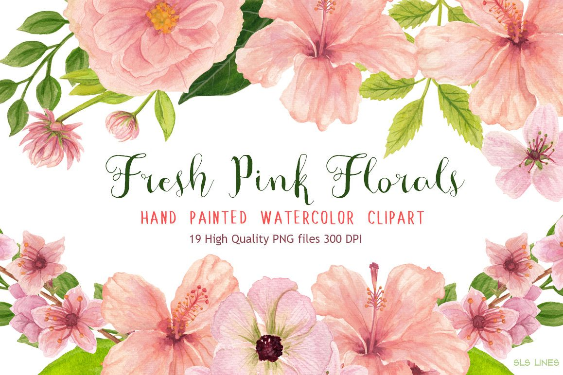 1158x772 Pink Floral Watercolors Hibiscus