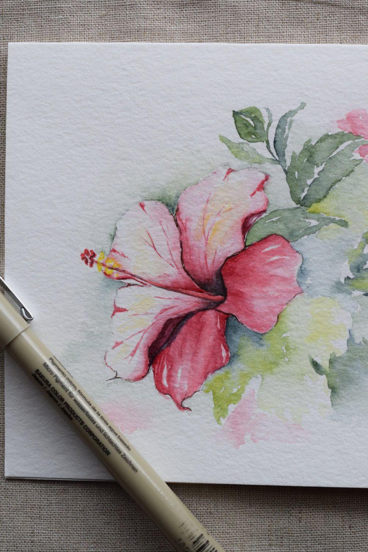 1001x1500 Pink Magenta Hibiscus Watercolor Handpainted Card Prints Paint