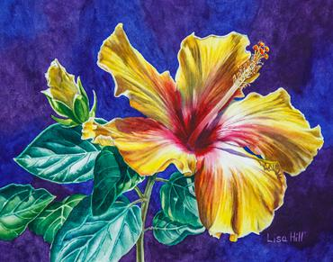 370x291 Yellow Hibiscus In Watercolor