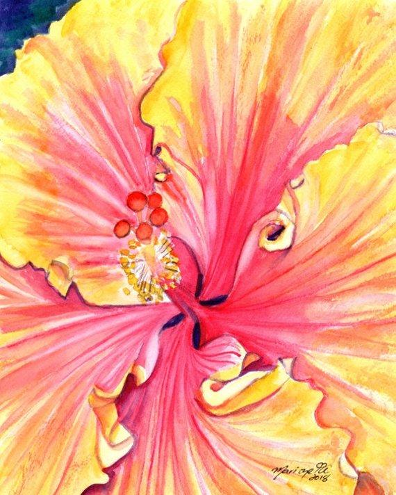 570x712 Hibiscus Watercolor Original Watercolors Hibiscus Paintings Etsy