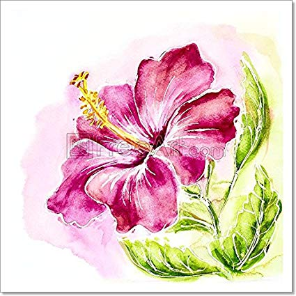 425x425 Pink Hibiscus, Watercolor Painting. Paper Print Wall