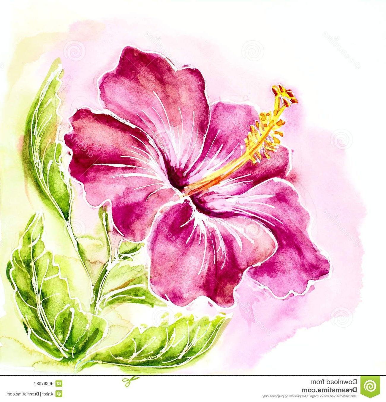 1300x1356 Hibiscus Watercolor Paintings Painting Hibiscus Flowers