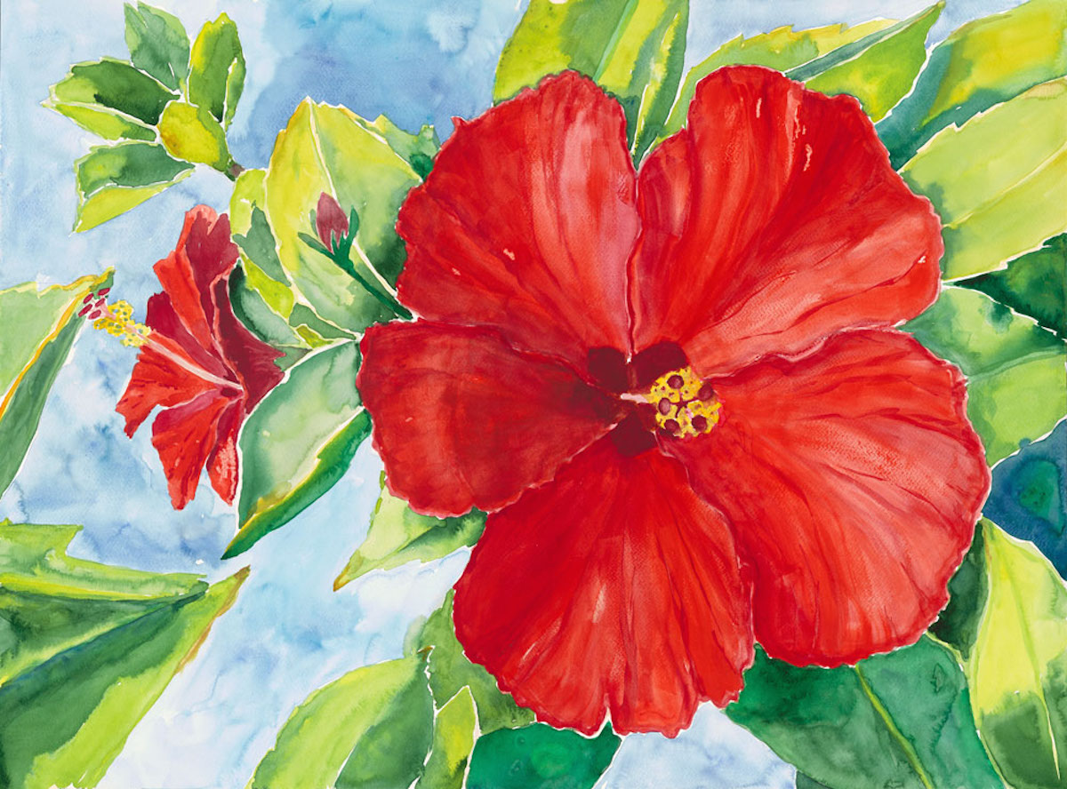 1200x888 China Red Hibiscus Watercolor Painting Mary Spears