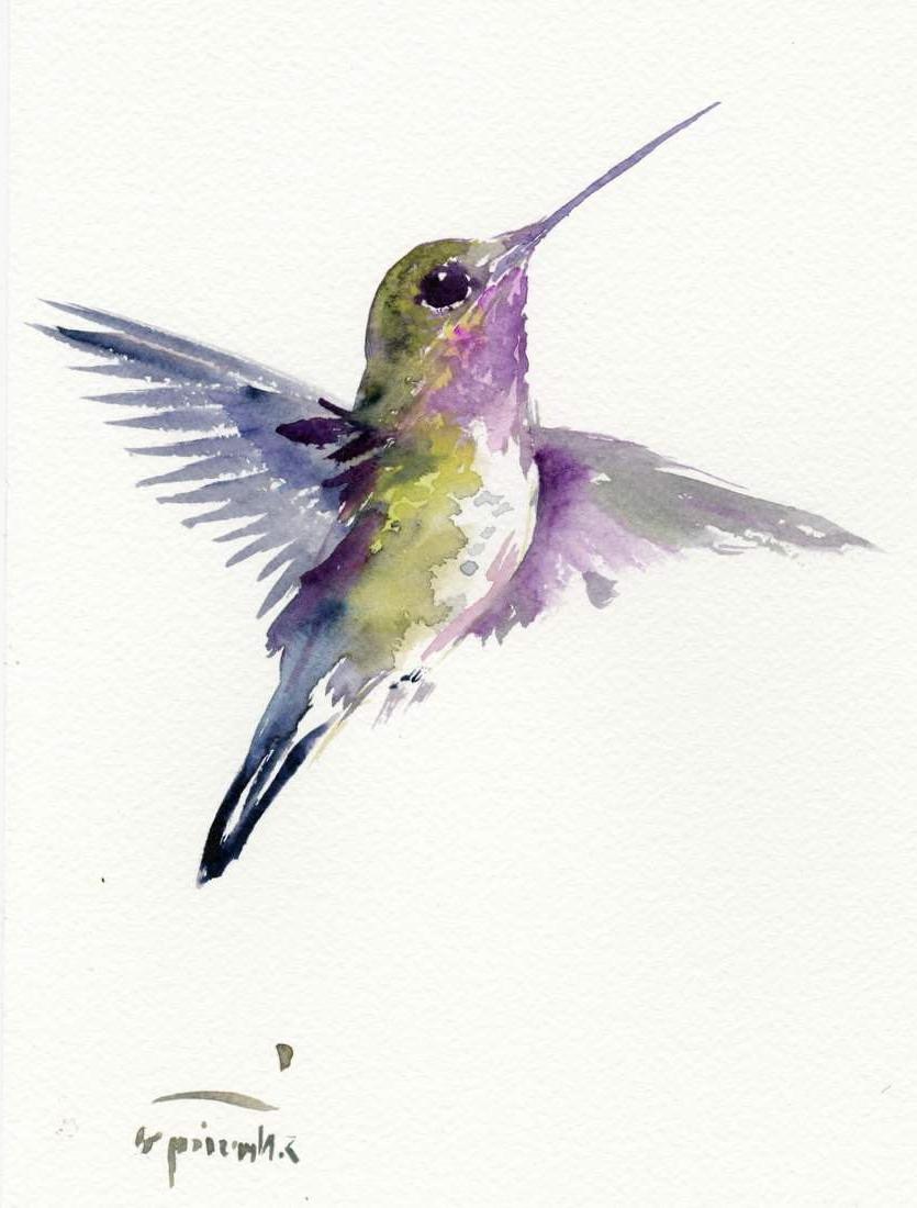 835x1100 Watercolor Paintings Of Hummingbirds Watercolor Paintings Of