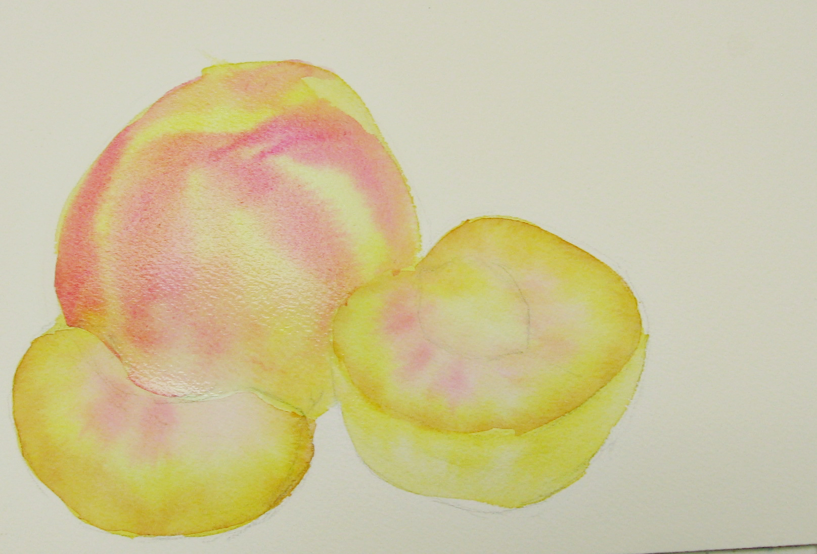 1616x1096 Painting Fruit In Watercolor Step By Step Peach Sweetbriar Sisters