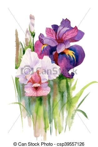 314x470 Watercolor Blooming Iris Flowers Illustration. Watercolor Blooming