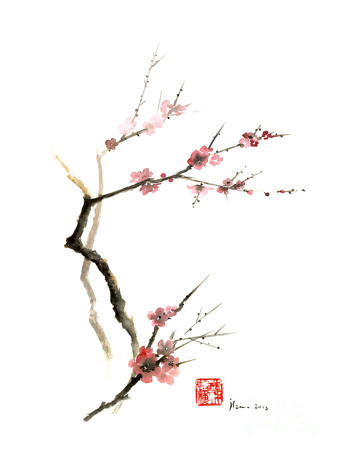 675x900 Cherry Blossom Sakura Flowers Pink Red White Brown Black Tree