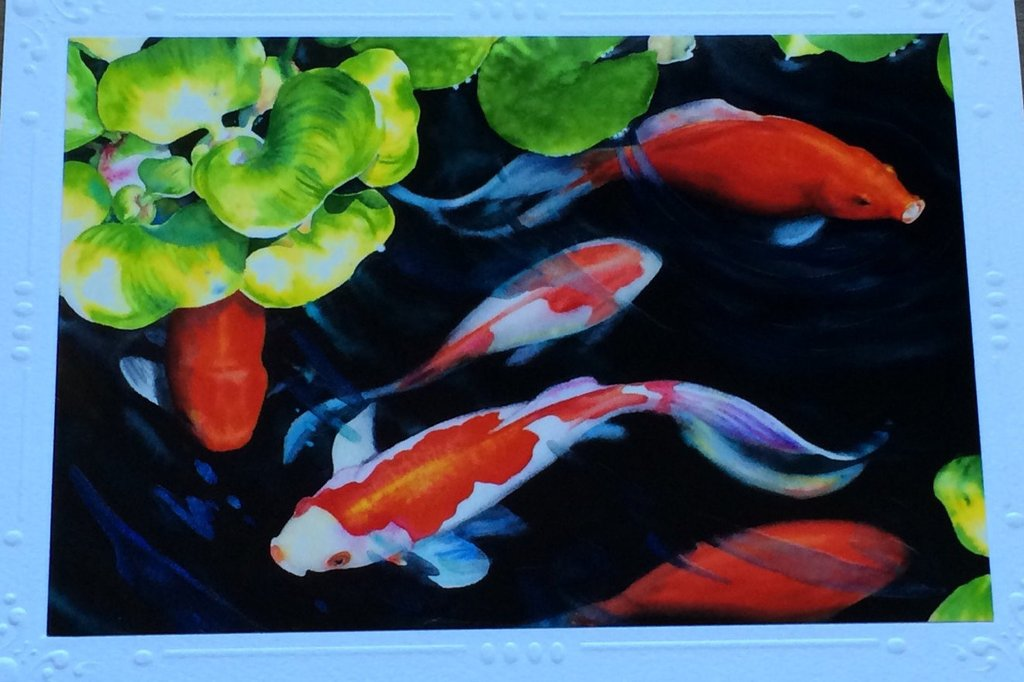 1024x682 5 Card Set Blank Art Note Greeting Cards Japanese Koi Fish, Fish