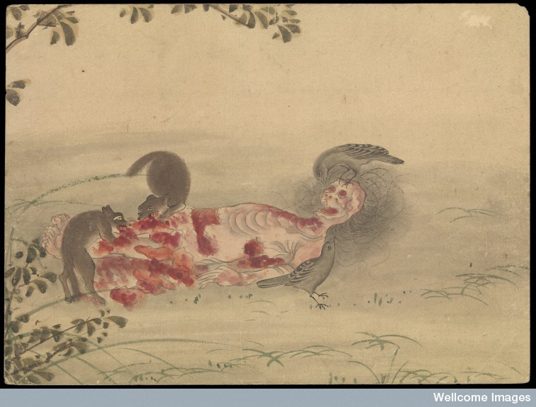 758x576 The Beauty Of Human Decomposition In Japanese Watercolor Strange