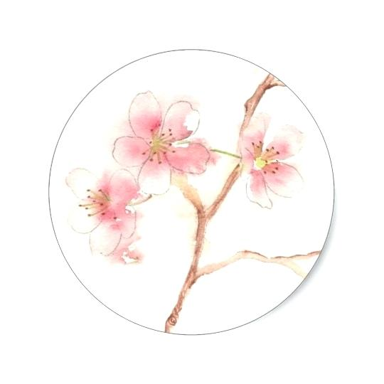 540x540 Cherry Blossom Watercolor Art. Image Result For Cherry Blossom