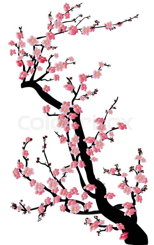 504x800 Watercolor Sakura Frame. Background With Blossom Cherry Tree